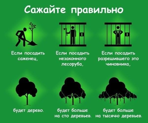 За кого голосувати на виборах до Київради? Мій суб'єктивний рейтинг (доповнено по мажоритарниках) (2/2)